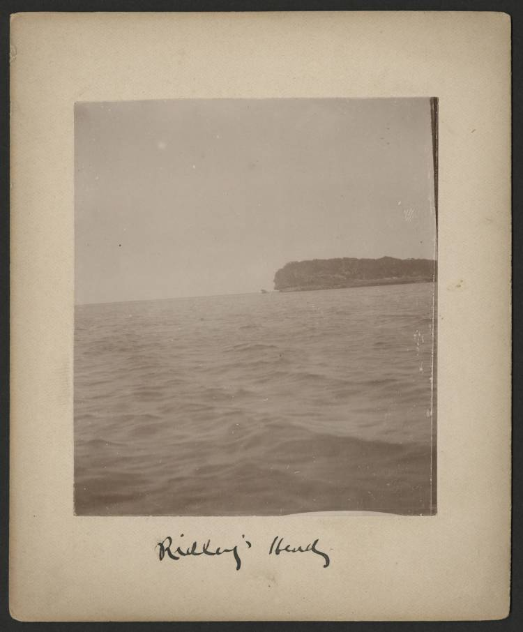 ridleys_head
